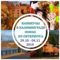 Осенние каникулы в Калининграде, 2019